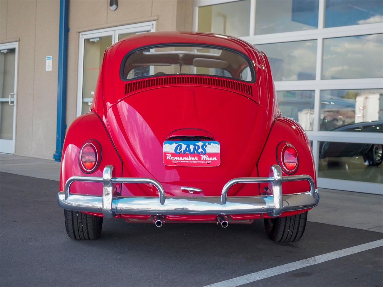 Large Picture of Classic 1964 Volkswagen Beetle - $18,499.00 - QX5G