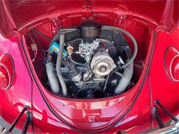 Picture of '64 Volkswagen Beetle - QX5G