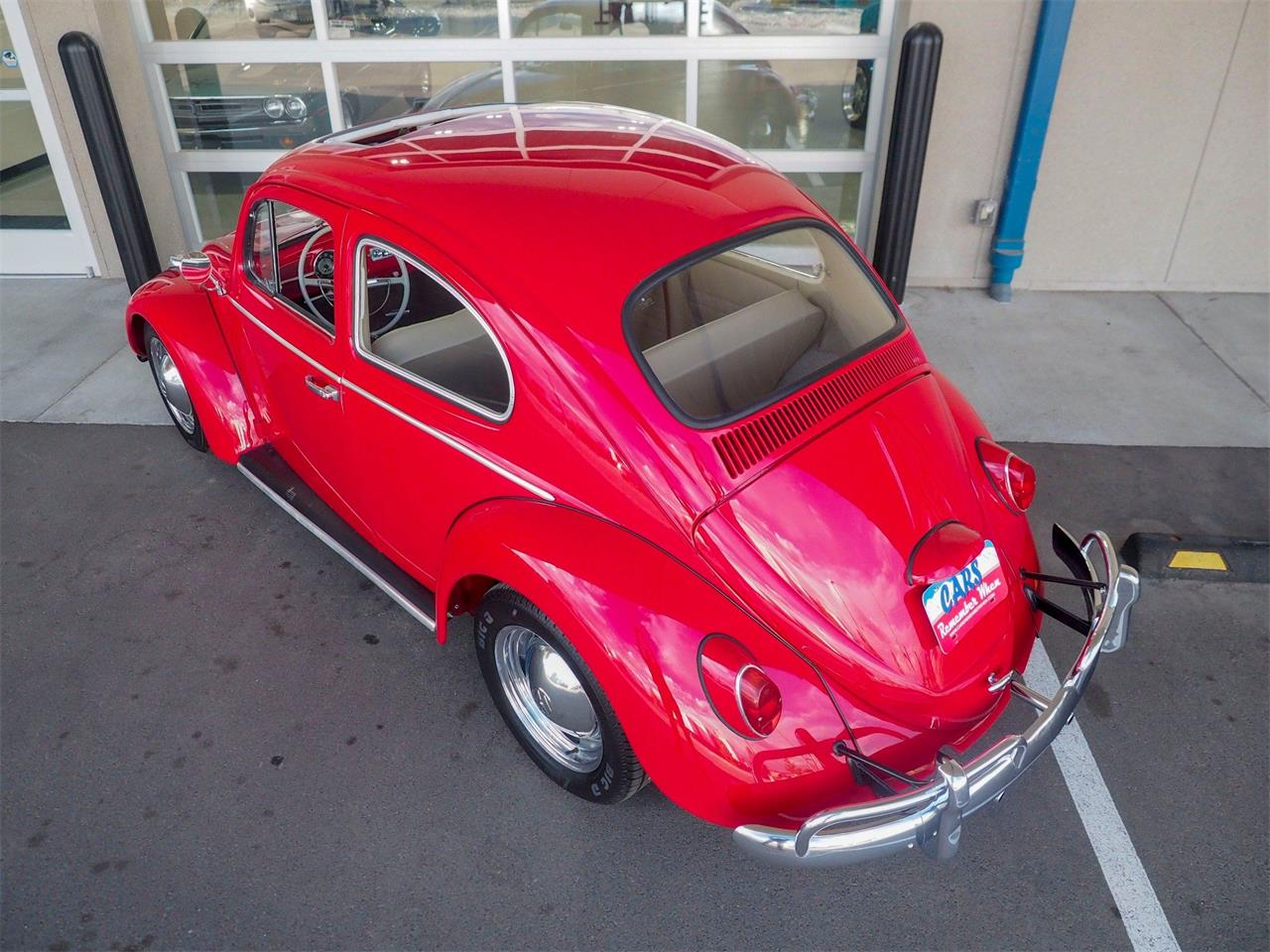 Large Picture of Classic 1964 Beetle located in Colorado - $18,499.00 Offered by Cars Remember When - QX5G