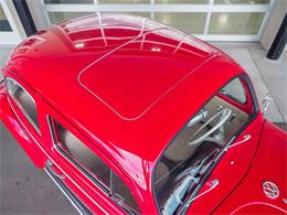 Picture of Classic 1964 Volkswagen Beetle located in Colorado - $18,499.00 - QX5G