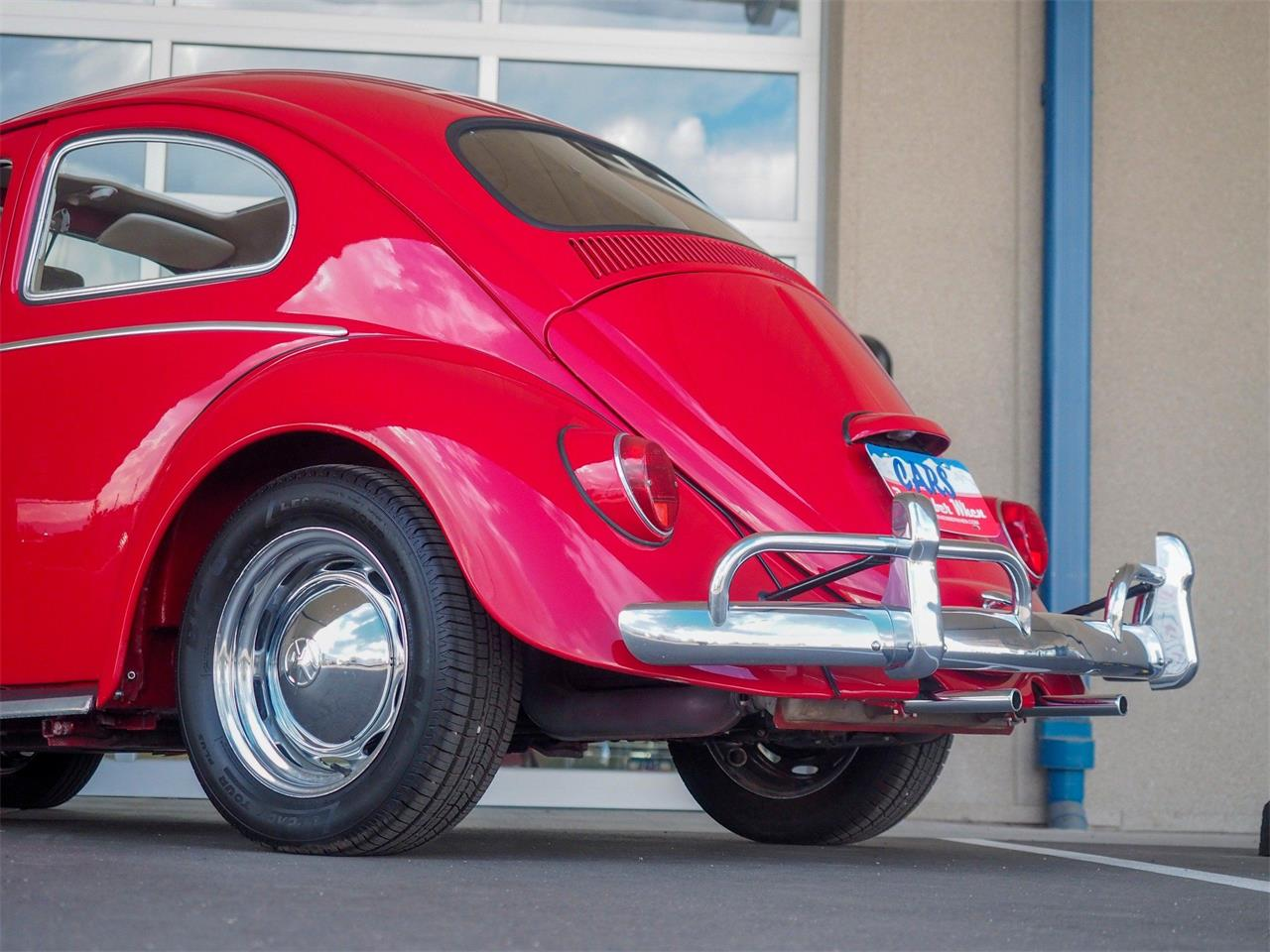 Large Picture of Classic '64 Volkswagen Beetle located in Englewood Colorado - QX5G