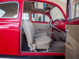 Picture of Classic '64 Beetle located in Colorado - $18,499.00 - QX5G