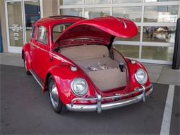 Picture of Classic 1964 Beetle located in Colorado - $18,499.00 - QX5G