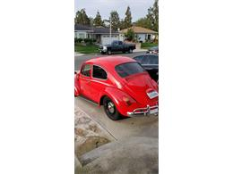 Picture of Classic 1965 Beetle - $12,000.00 Offered by a Private Seller - QXYY
