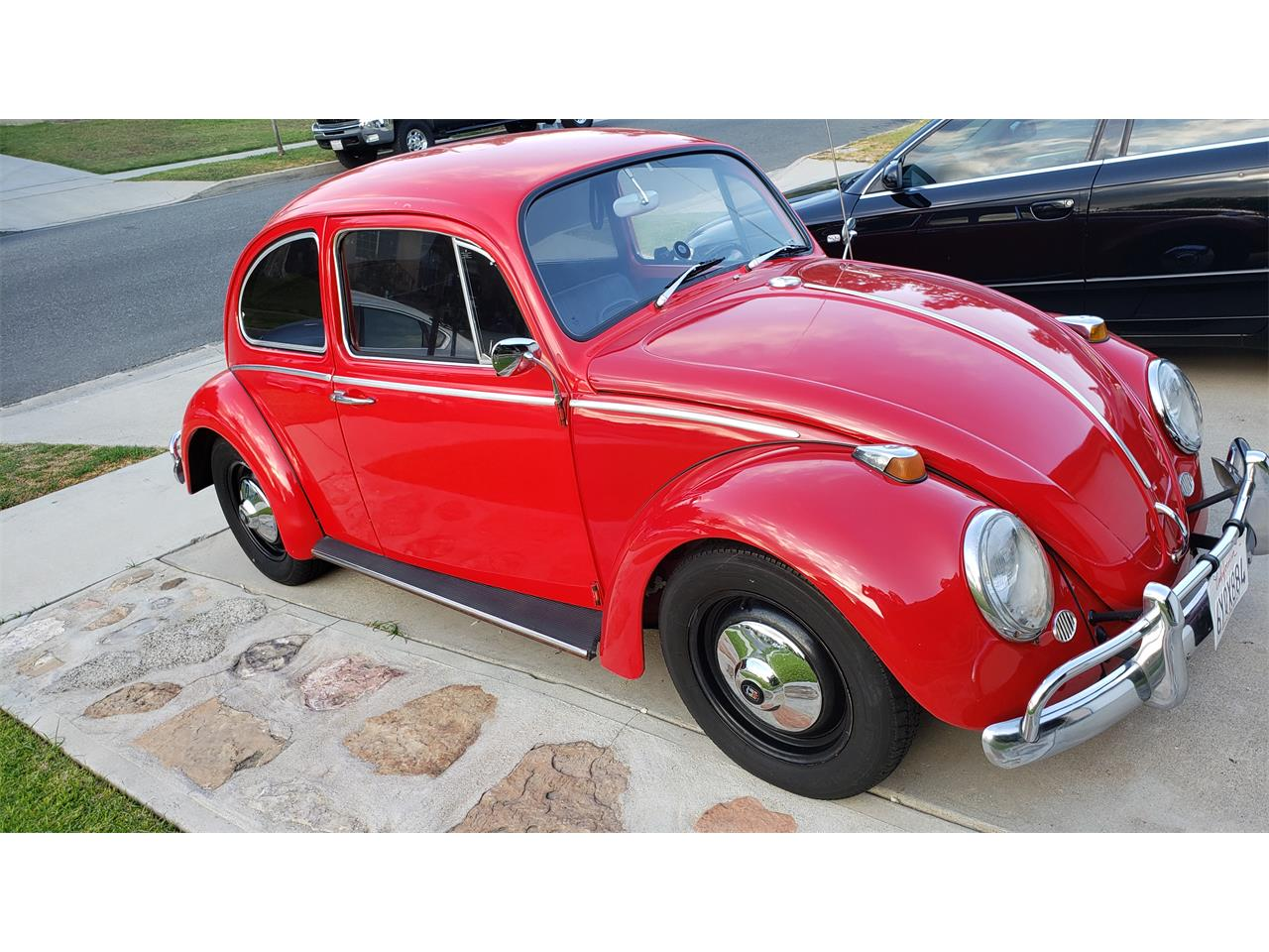 Large Picture of Classic '65 Volkswagen Beetle - $12,000.00 Offered by a Private Seller - QXYY