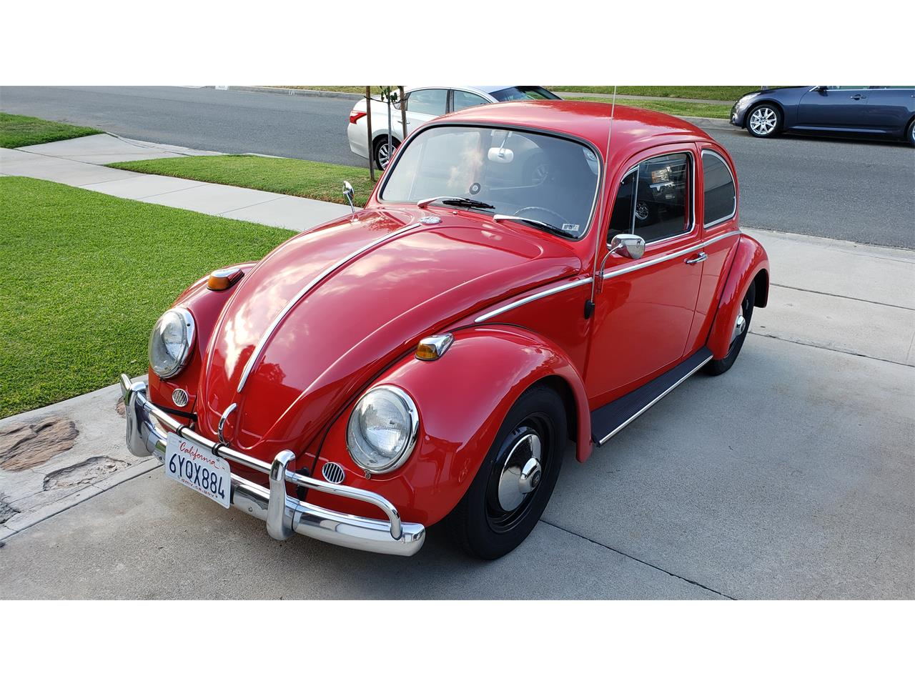 Large Picture of Classic '65 Volkswagen Beetle Offered by a Private Seller - QXYY