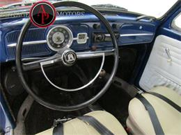Picture of '67 Beetle - QYI1