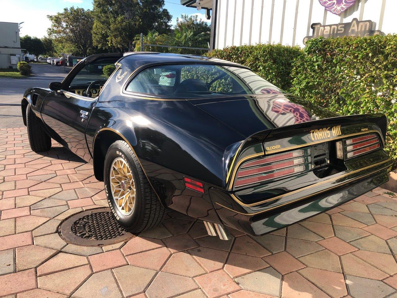 Large Picture of '77 Firebird Trans Am SE - QYZB