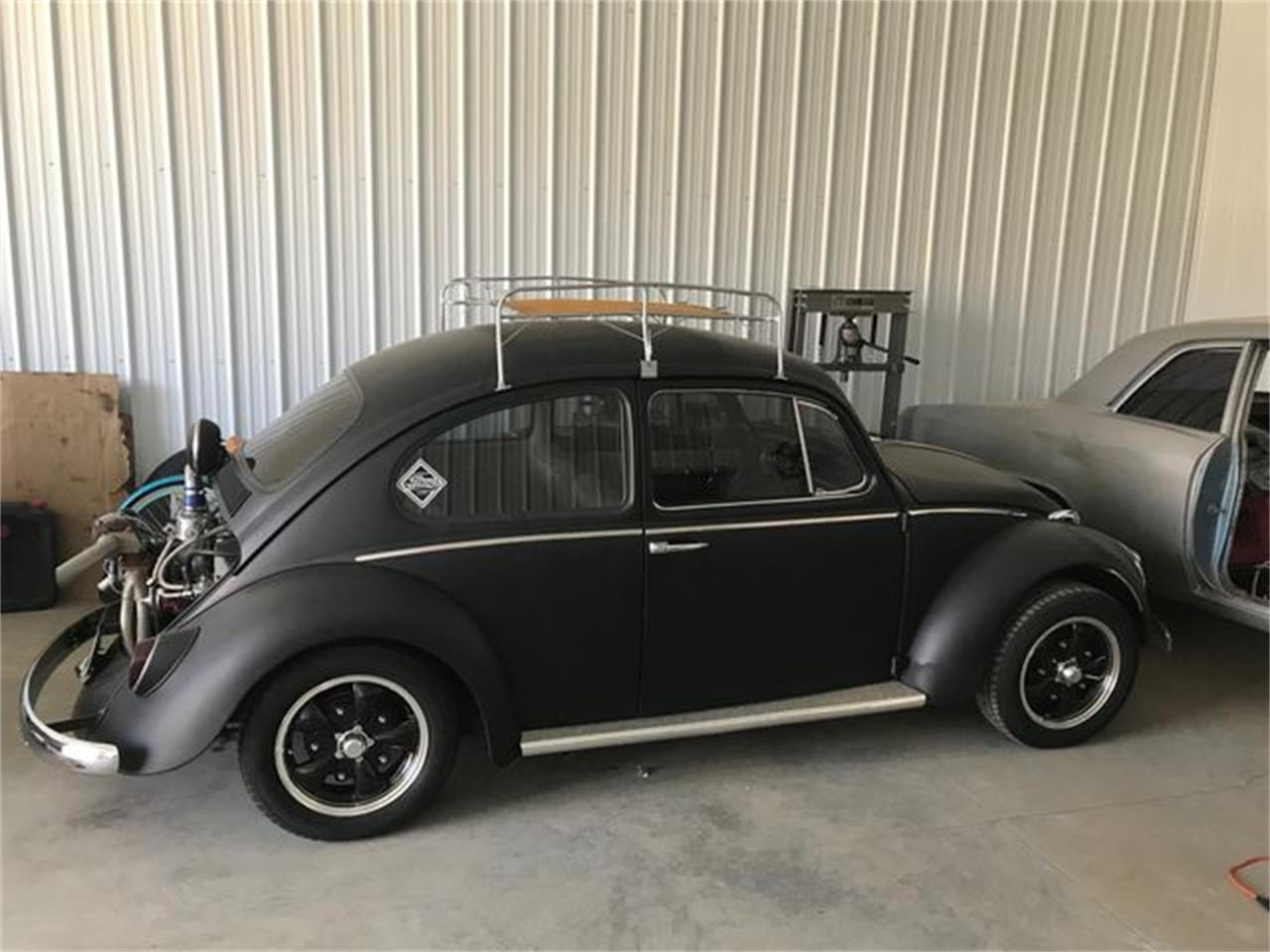 Large Picture of '64 Beetle - QZFX