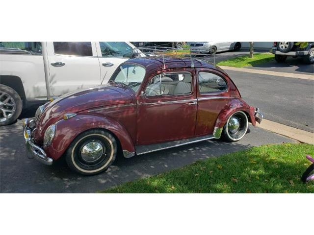 Picture of '62 Beetle - QT7C