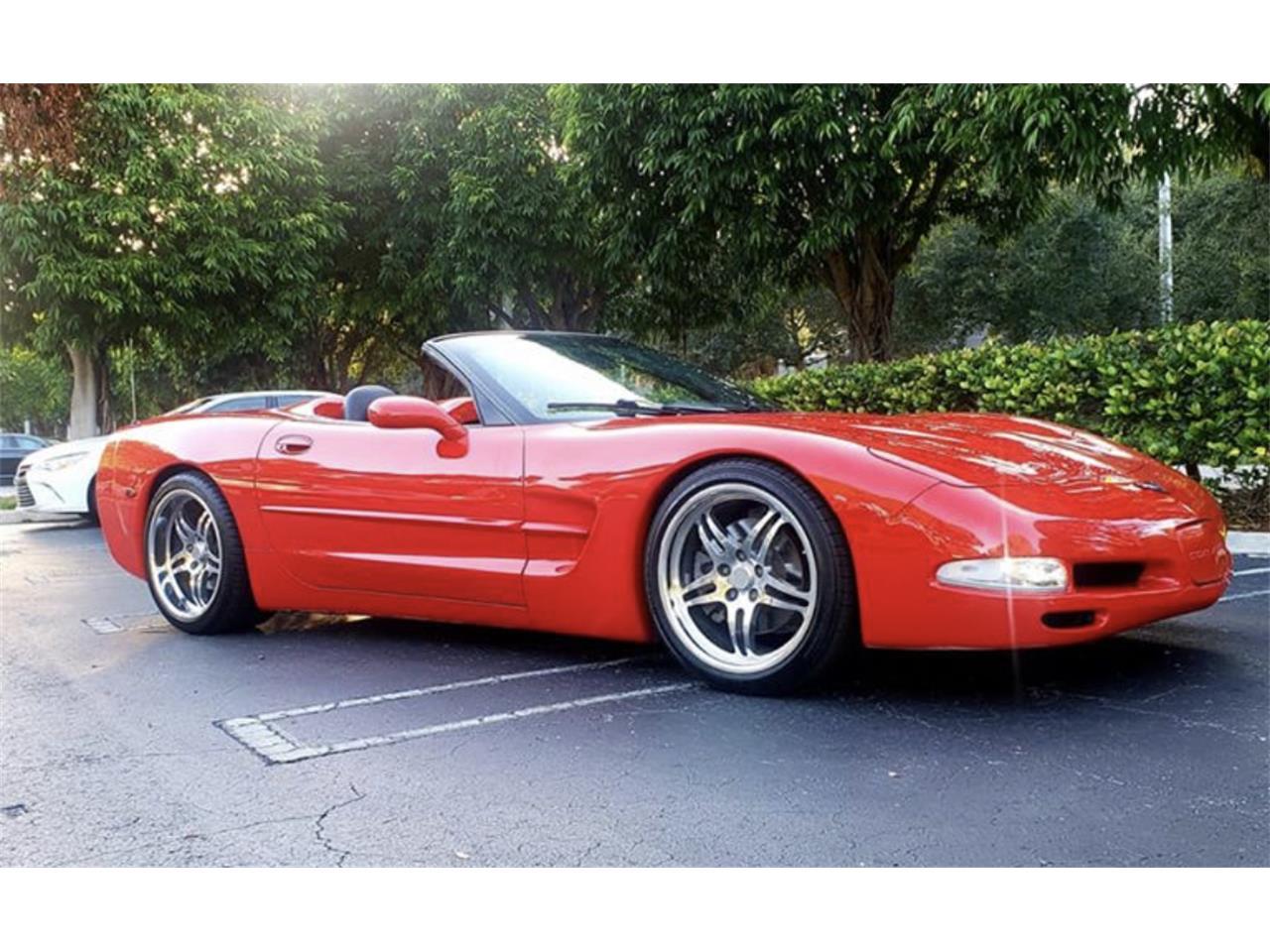Large Picture of '99 Corvette - QZIC