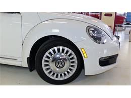 Picture of '13 Beetle - QZOG