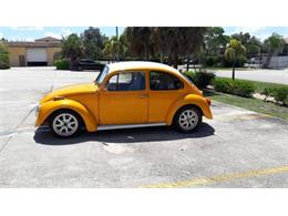 Picture of '74 Beetle - QZSY