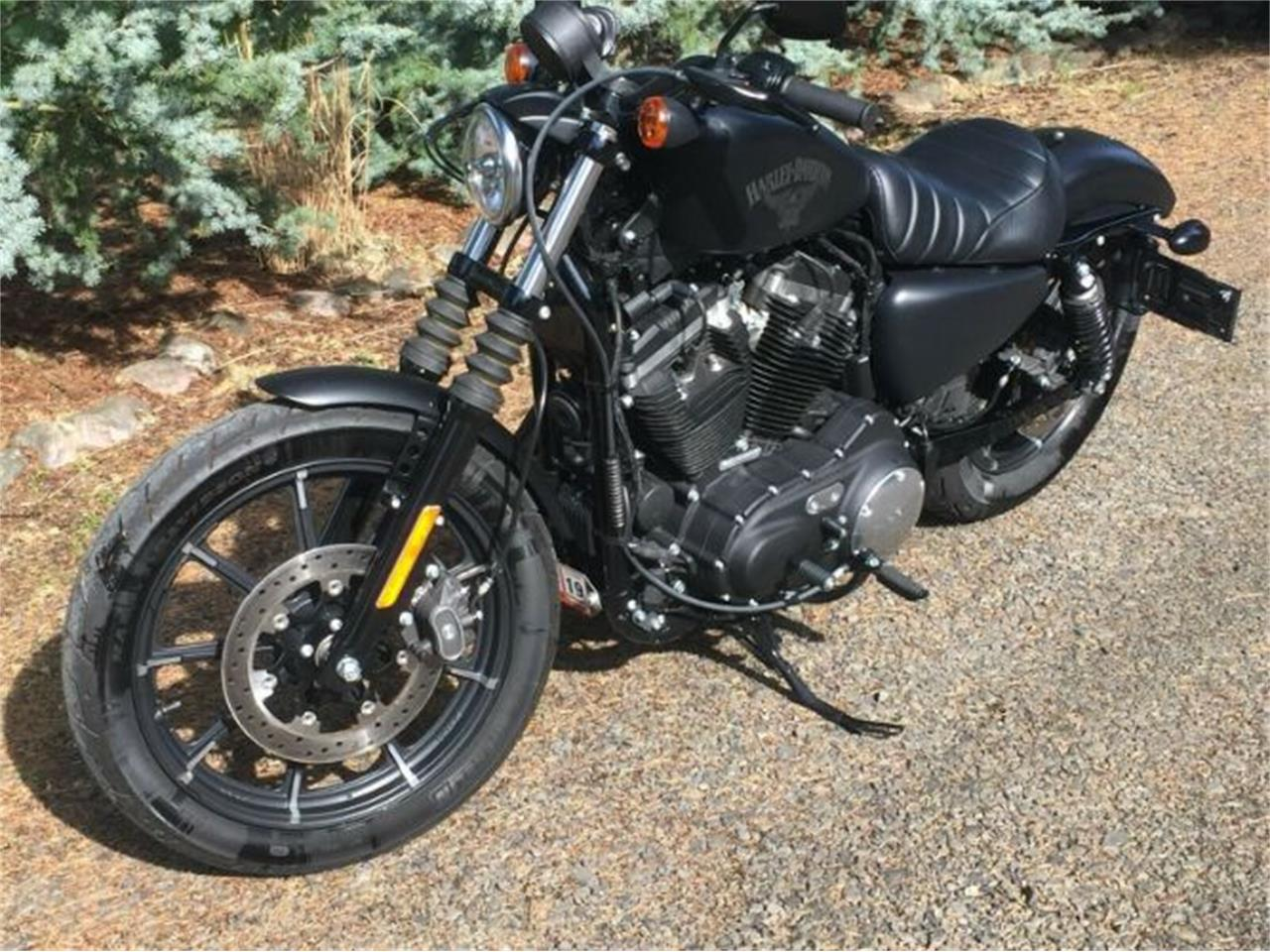 Large Picture of '18 Sportster - QZU0