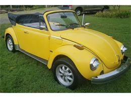 Picture of '76 Beetle - R06O