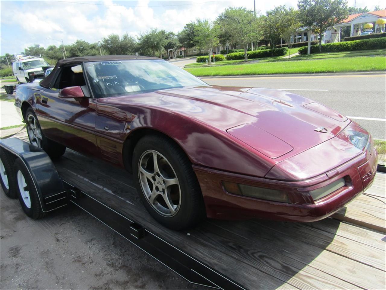 Large Picture of '93 Corvette - R10V
