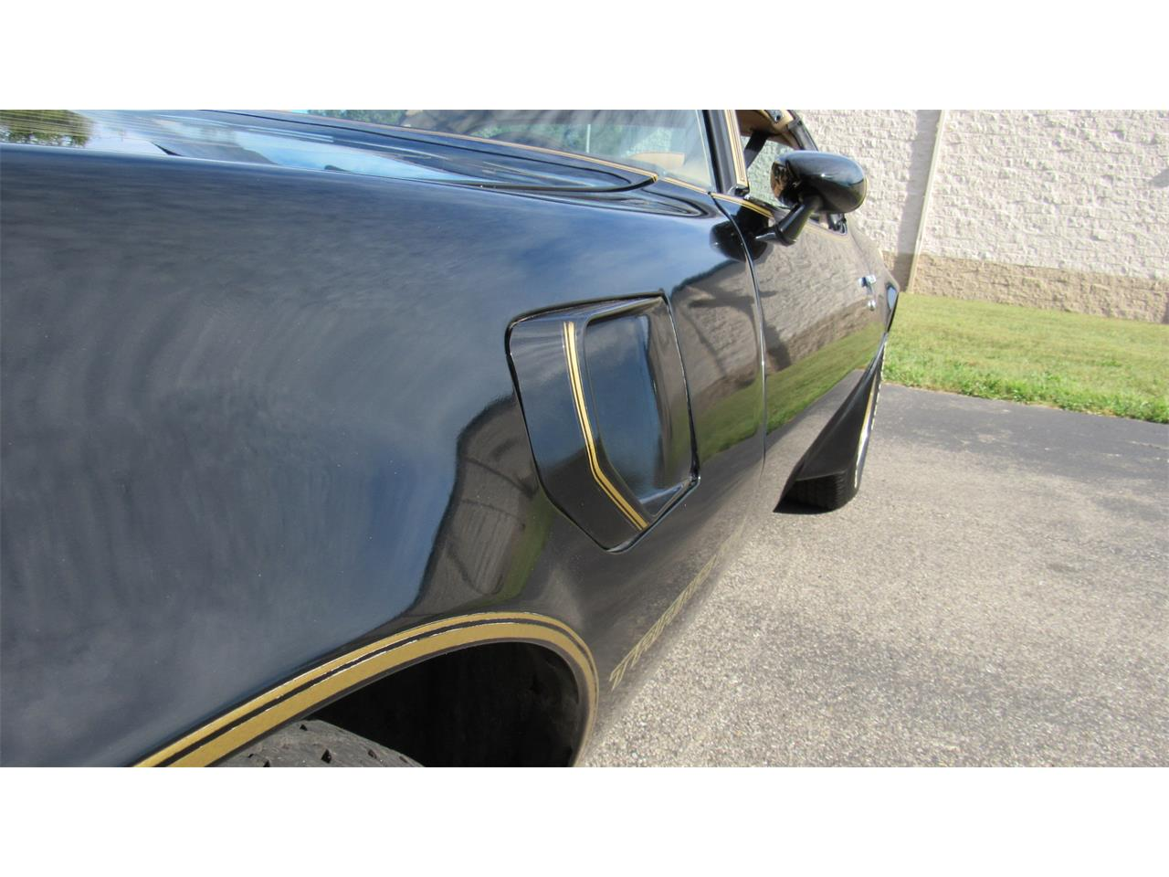 Large Picture of '81 Firebird Trans Am - R12F
