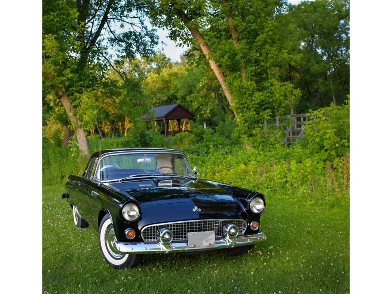 Large Picture of '55 Thunderbird - R18M