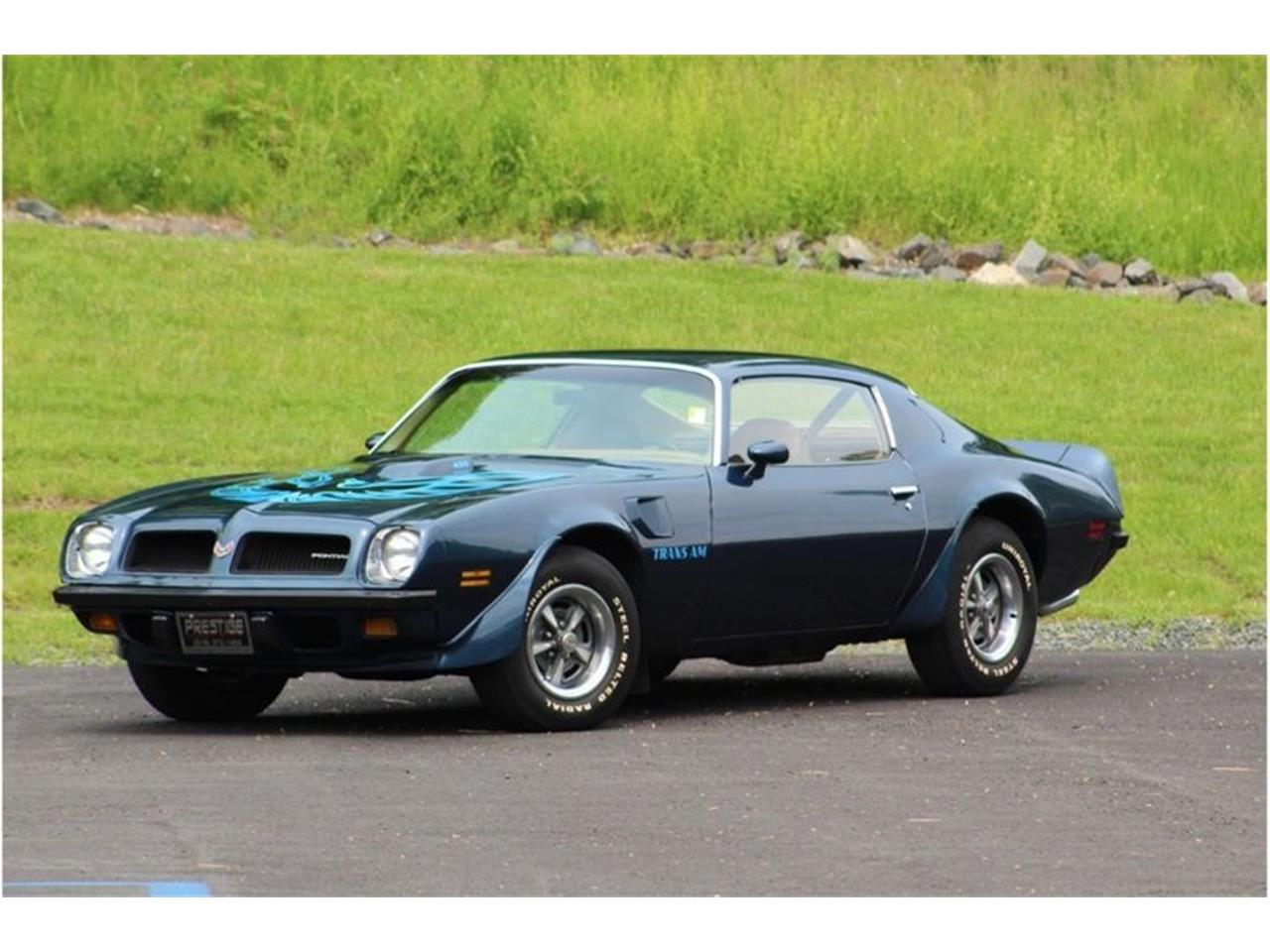 Large Picture of '74 Firebird Trans Am - R18Z