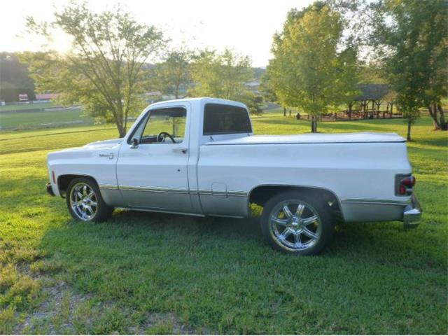 Picture of '75 C10 - R1BW