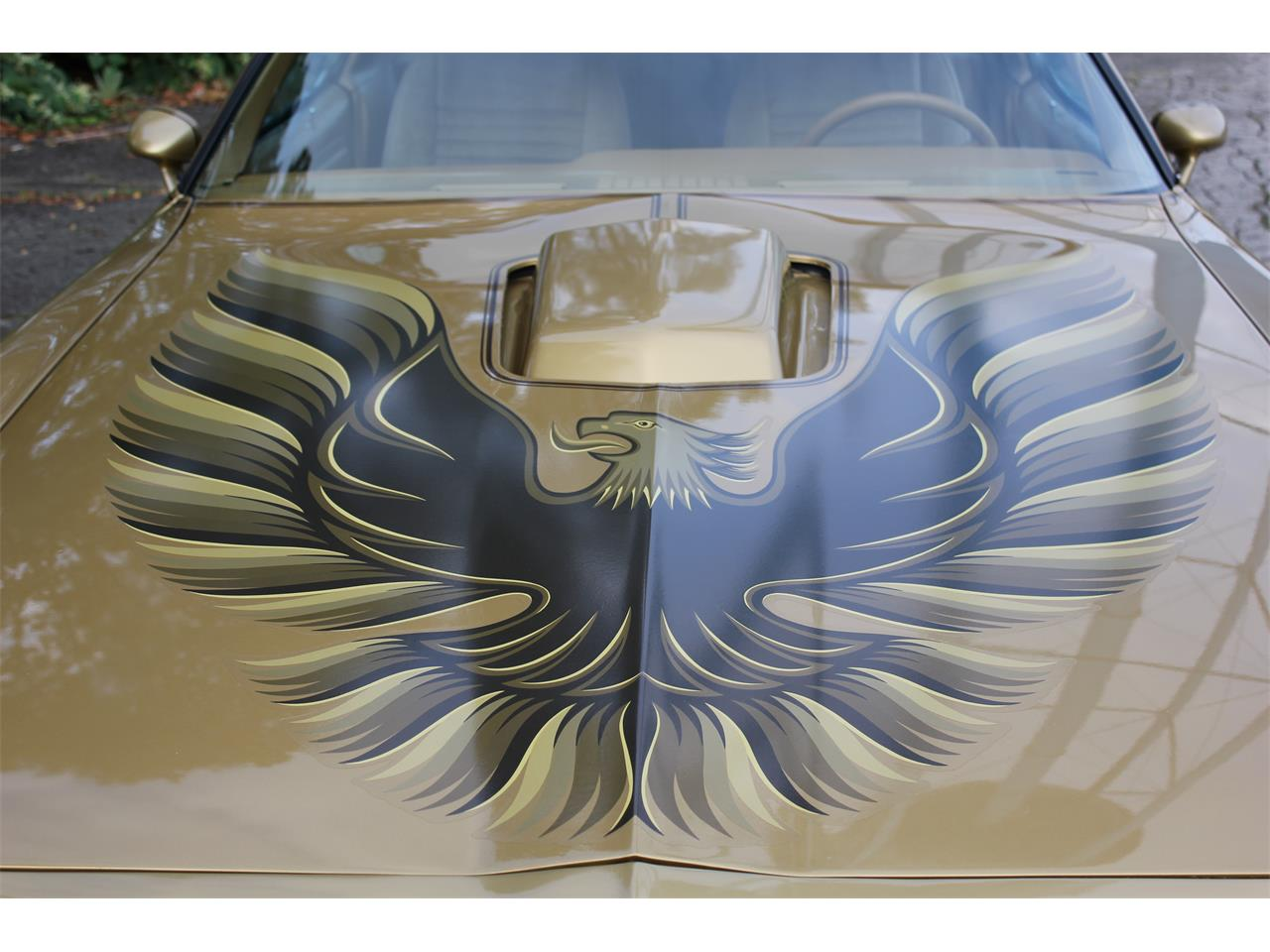 Large Picture of '78 Firebird Trans Am - R1SA