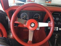 Picture of '78 Corvette - R1UE