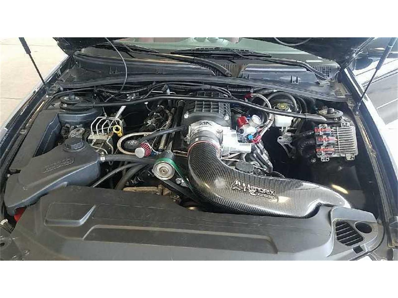 Large Picture of '06 GTO - R1V9