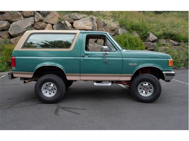 Picture of 1989 Ford Bronco Offered by a Private Seller - R29E