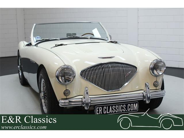 Picture of 1956 Austin-Healey 100-4 BN2 located in Waalwijk noord brabant Offered by  - R2AJ