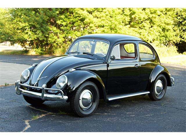 Picture of '59 Beetle - R2DO