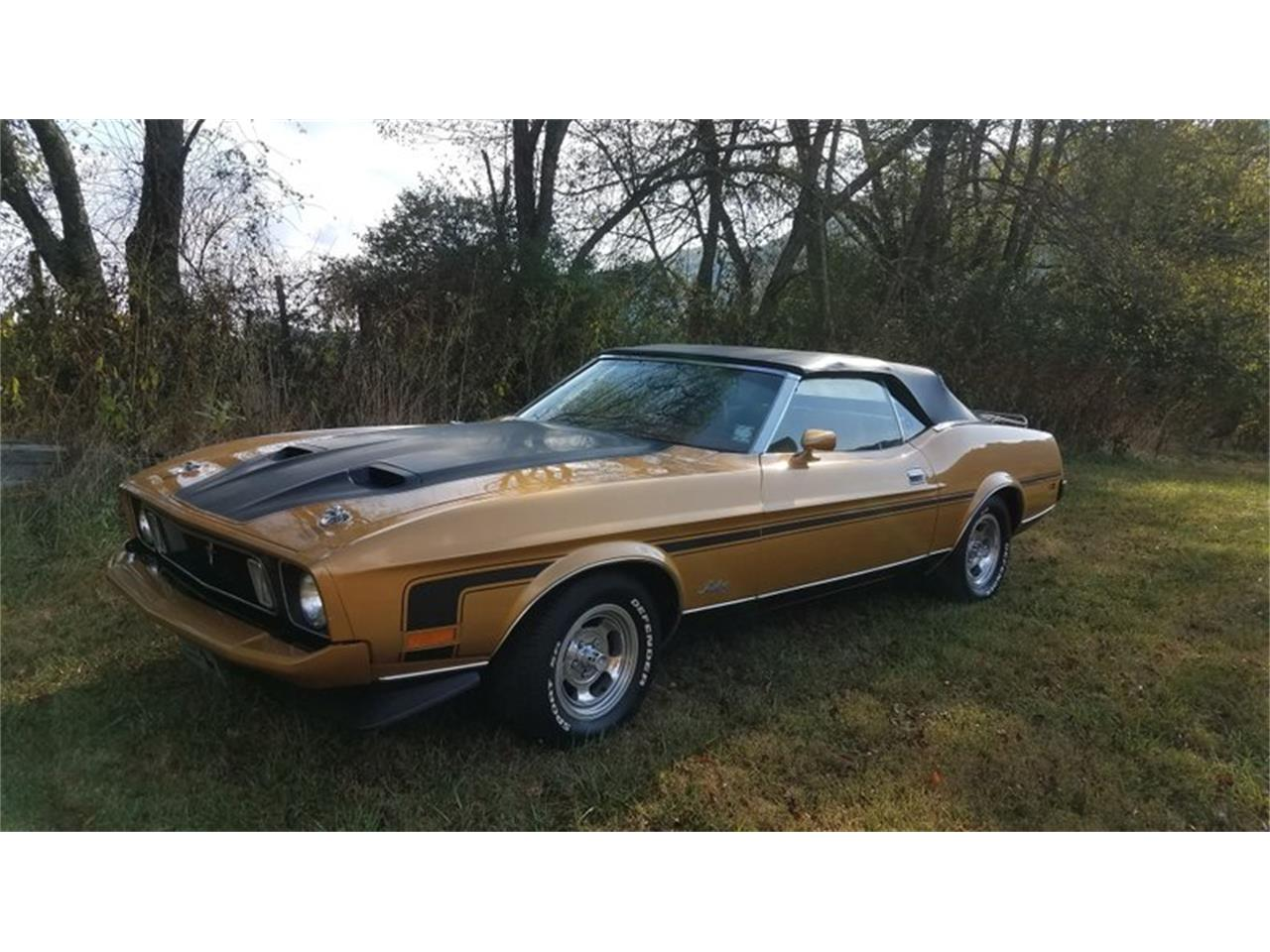 Large Picture of '73 Mustang - R2E0