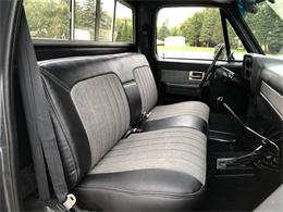 Picture of '83 Chevrolet K-10 located in Maple Lake Minnesota Offered by Silver Creek Classics - R2IJ