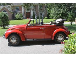 Picture of '71 Beetle - R0GM