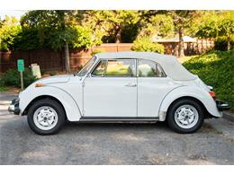 Picture of '79 Super Beetle - R2O1