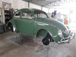 Picture of '69 Beetle - R2V5