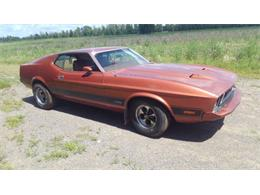 Picture of '73 Ford Mustang located in Cadillac Michigan - $15,995.00 Offered by Classic Car Deals - R0HN