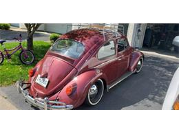 Picture of '62 Beetle - R0HU