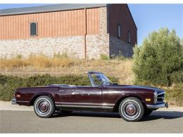 Picture of '68 250SL - R3E0