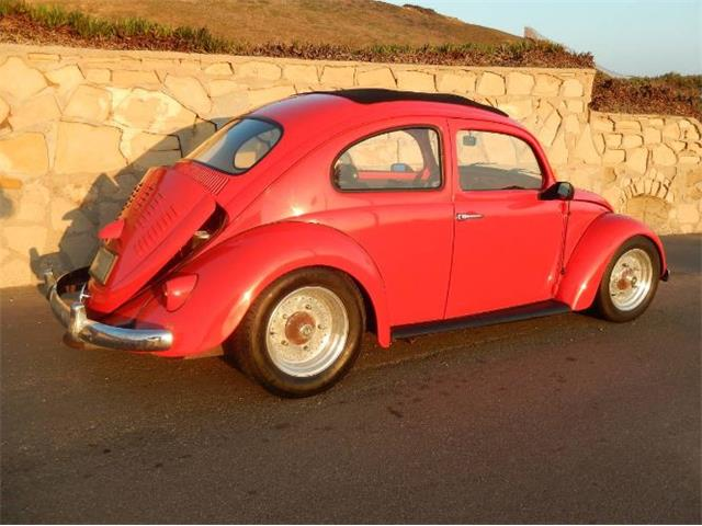 Picture of '63 Beetle - R4OI