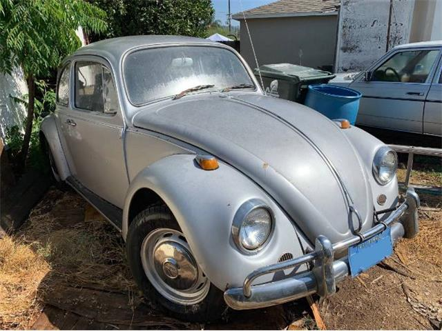 Picture of '67 Beetle - R4P0