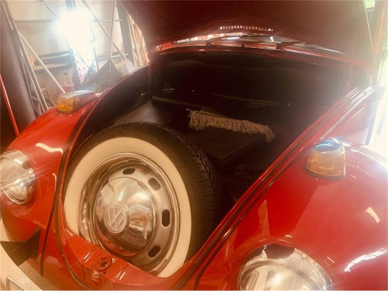 Large Picture of '69 Beetle - R0OF