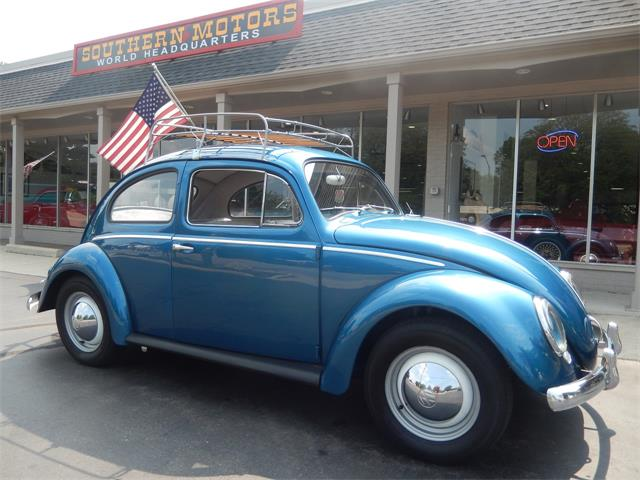 Picture of '59 Beetle - R5A1