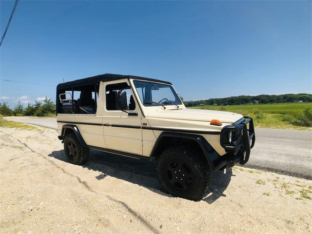Picture of '92 G-Class - R5BO