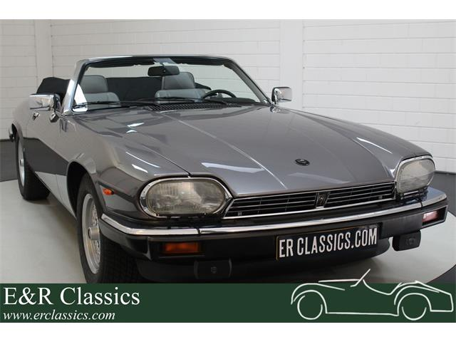 Picture of '91 XJS - R693