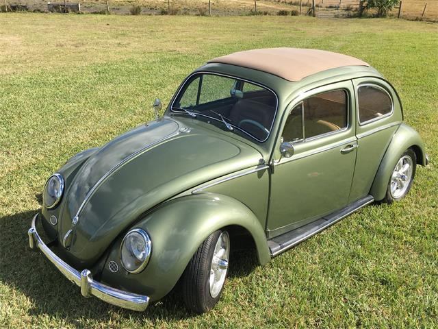 Picture of '63 Beetle - R6CL