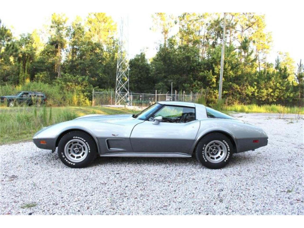 Large Picture of '78 Corvette - R0UP