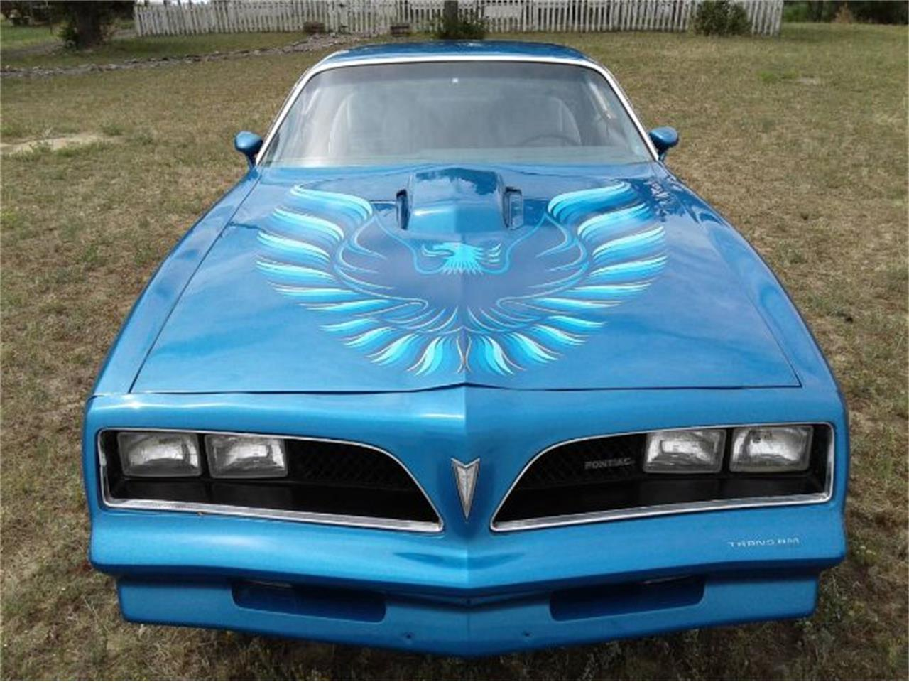 Large Picture of '78 Firebird Trans Am - R0VK