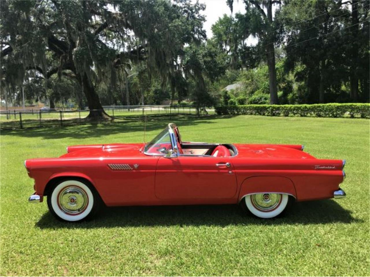 Large Picture of '55 Thunderbird - R0WL