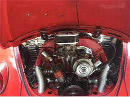 Picture of '67 Beetle - R0WY