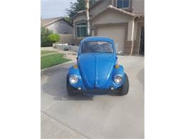 Picture of '74 Baja Bug - R8T6